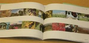 Book8_2