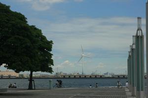 Photo_335