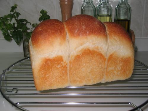 天然酵母で作ったパン